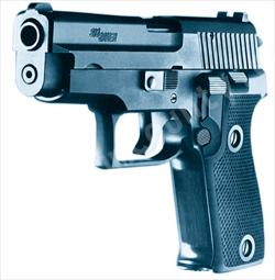 Generic Photo of a Hand Gun